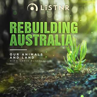Rebuilding Australia Our Homes and Businesses
